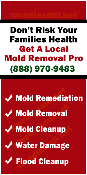 Call Your Local Mold Removal Pro's @ 888-970-9483